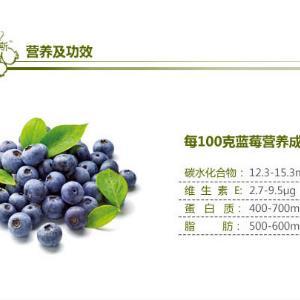 林海雪原蓝莓酒介绍