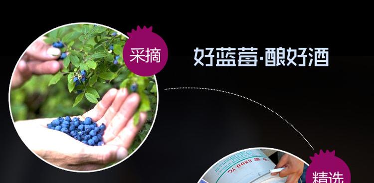 林海雪原蓝莓酒原材料
