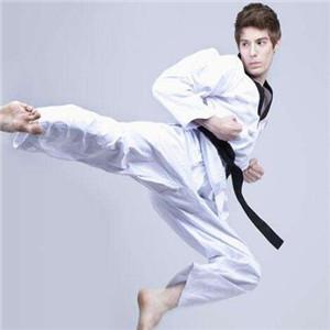 文武跆拳道优质