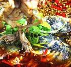 鼎味美蛙鱼头雷竞技二维码下载