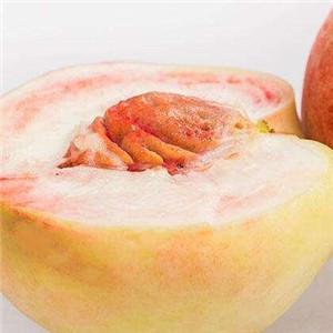鲜果乐园桃子