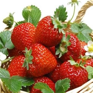鲜果大咖草莓