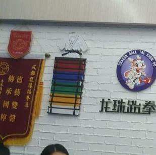 龙珠跆拳道锦旗
