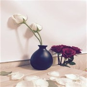 鼎卉鲜花展示