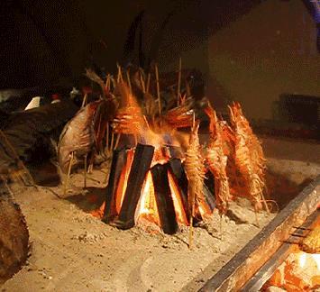烟花炉端烧烤串