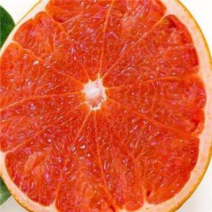 鲜丰果园西柚
