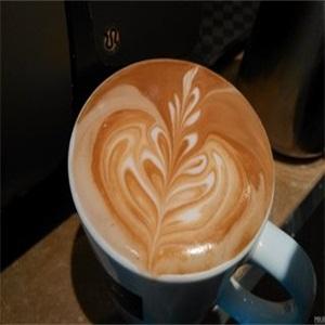 一墙花开主题咖啡