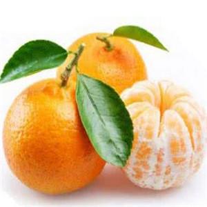 鲜果之家甜橘