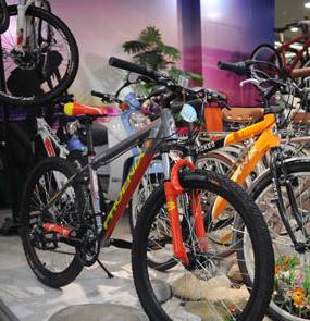 凤凰自行车店面展示