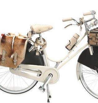 凤凰自行车女式款