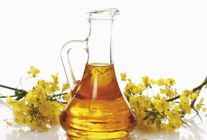 爱菊菜籽油健康