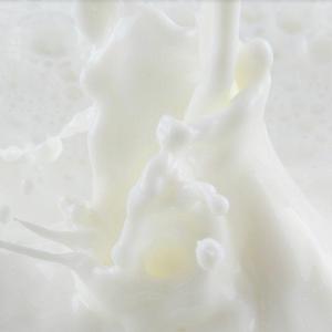 纯甄牛奶香滑