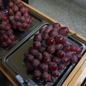 宾川葡萄好吃