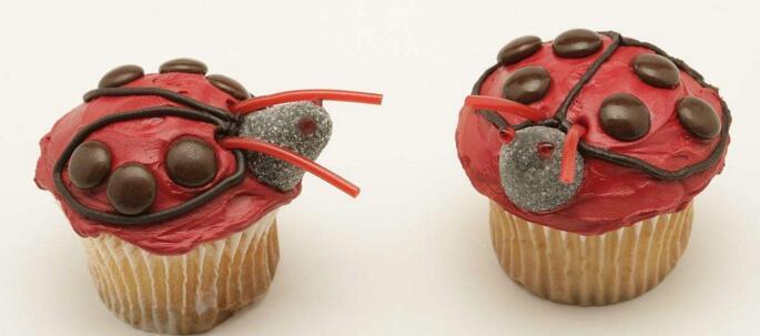 瓢蟲蛋糕加盟