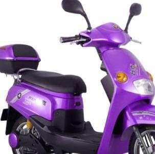 捷安特电动车紫色