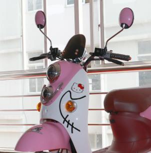 捷安特电动车粉色