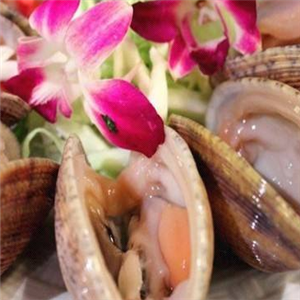 波記海鮮火鍋蛤蜊