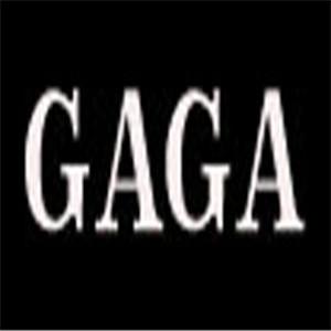gaga女装连锁店