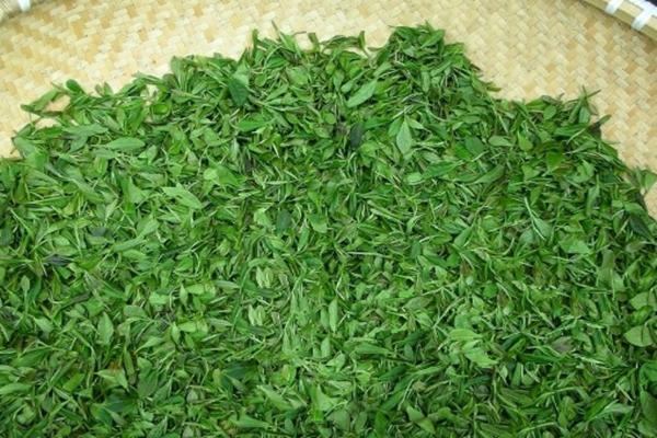 圣道茶业清香