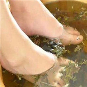 七朵莲花足浴
