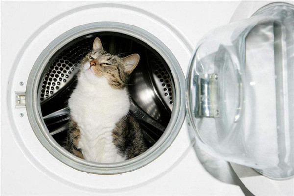 良家洗衣一個