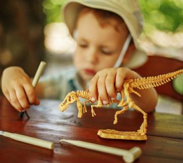 宝贝基地儿童主题乐园恐龙