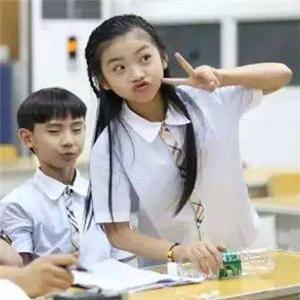 CCTV中学生学习