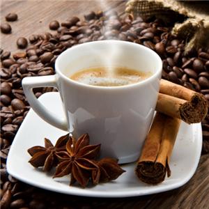 風雅老樹咖啡熱的