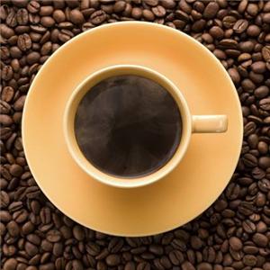 風雅老樹咖啡微苦
