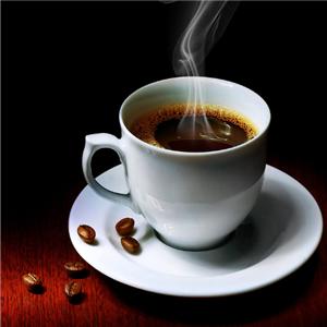 風雅老樹咖啡品嘗