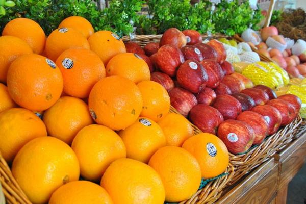 水果工坊加盟