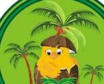 海南椰子雞