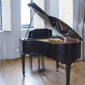 舒曼钢琴负责