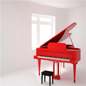 舒曼钢琴环境