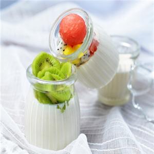 希腊酸奶品尝