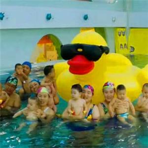 尼莫亲子游泳雷竞技最新版