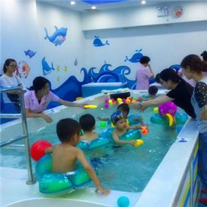 小龙宫游泳馆专业