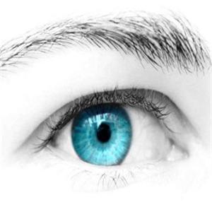 菲份视力保健蓝色