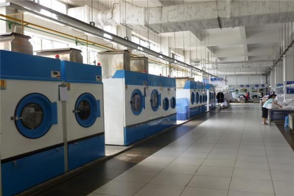 大象干洗洗衣机