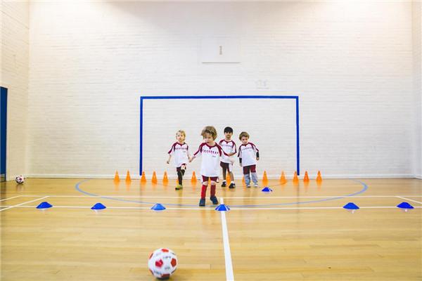 球小星欢动足球室内