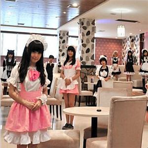 喵球女仆咖啡厅