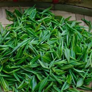 金壶春茶业加盟