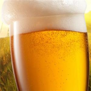 德国汉森精酿啤酒屋广告