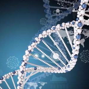 云康基因检测