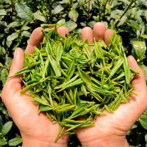 佰得盛茶叶包装绿色