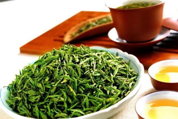紫金山茶叶沏茶