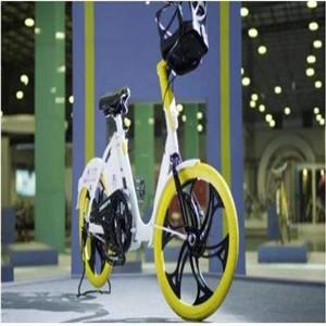 永久电踏车展示