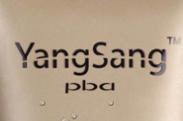 PBA YangSang加盟