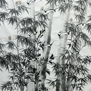 兰亭书画院竹子