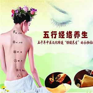 鳳禧經絡養生專業